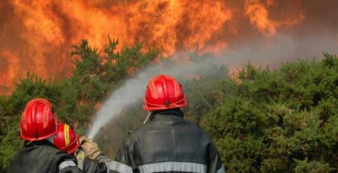 الجهود متواصلة لإخماد حريق غابوي شب بإقليم شفشاون