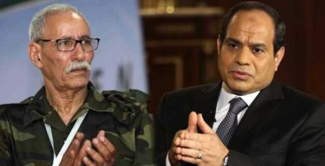 باحث في قضايا الساحل والصحراء يكشف عواقب استقبال البرلمان المصري للبوليساريو