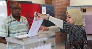 العملية الانتخابية