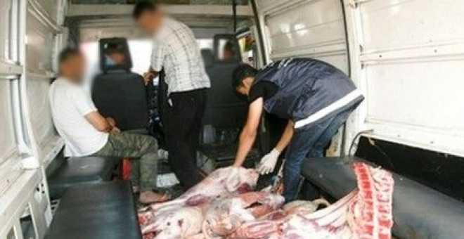 إتلاف مواد غذائية ولحوم وأسماك فاسدة على الصعيد الوطني