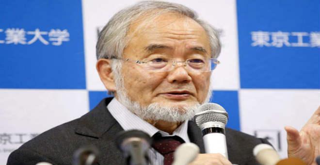 جائزة نوبل للطب من نصيب  باحث ياباني في ال 71 من عمره