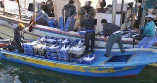 محركات قوارب الصيد التقليدي