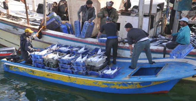 بعد حادثة محسن.. صيادو الحسيمة يستفيدون من محركات قوارب الصيد التقليدي