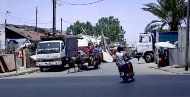 فيلم وثائقي قصير يعرفكم على مهنة الميخالي في المغرب
