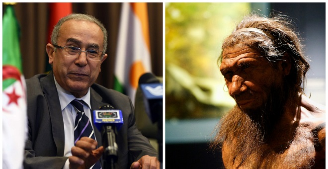 بن شيكو يكتب عن الإنسان البدائي الجزائر ي الذي يريد منافسة المغرب في إفريقيا