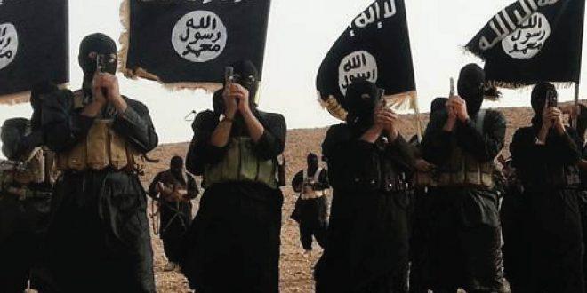 """60 في المائة من مقاتلي """"داعش"""""""