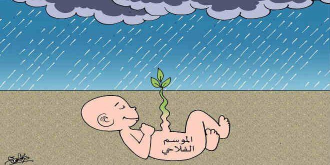 التساقطات المطرية