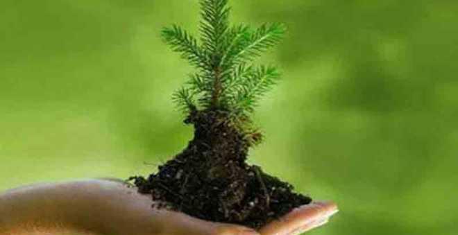 إطلاق ميثاق المحافظة على البيئة والسلامة وسط مهني الصحة