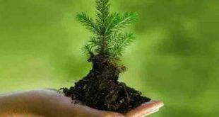 ميثاق المحافظة على البيئة