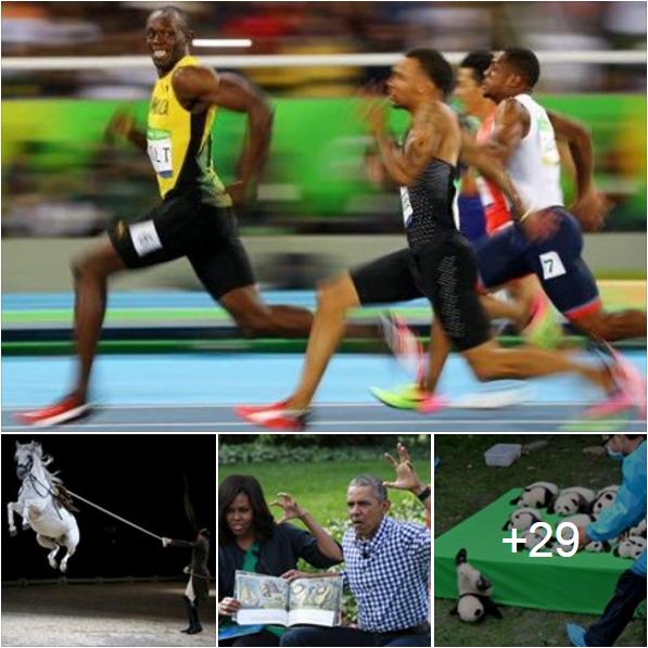بعض الصور التي لن تنتسى لعام 2016 وفقاً لوكالة رويترز للتصوير