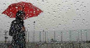 سقوط المطر