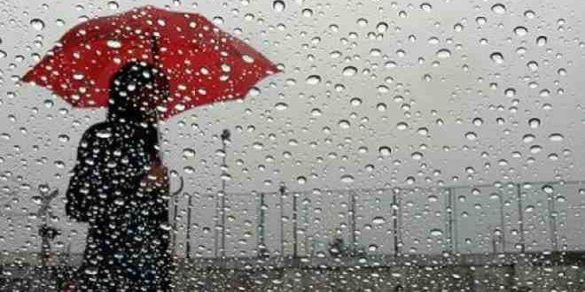 ما علاقة سقوط المطر بموجة غلاء أسعار الخضر؟!   مشاهد 24
