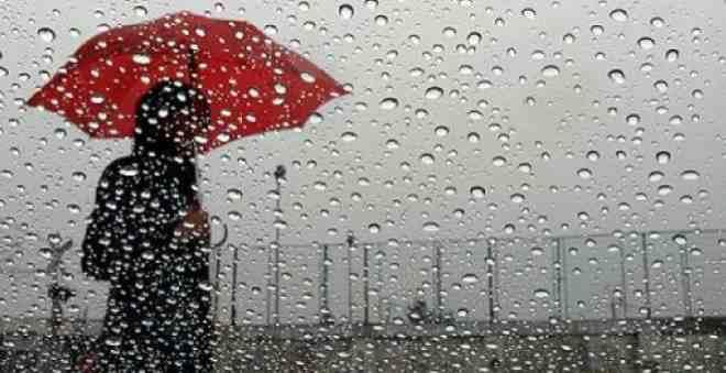 ما علاقة سقوط المطر بموجة غلاء أسعار الخضر؟!