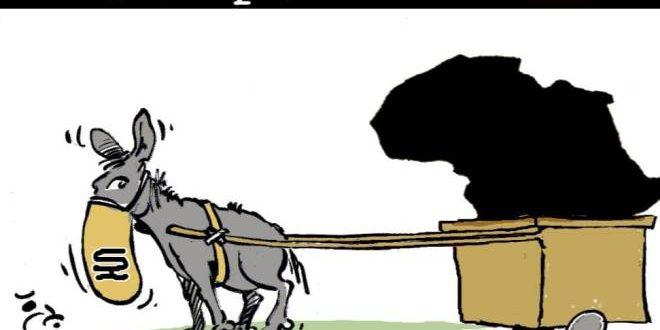 """كاريكاتير موقع """"الشروق"""" الجزائرية يلخص واقع """"المنتدى الإفريقي للاستثمار"""""""