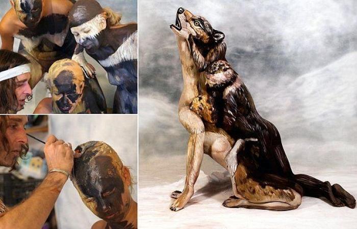 صورة قد تظن للوهلة الأولى أنها لذئب ولكن حقيقتها ستصدمك!