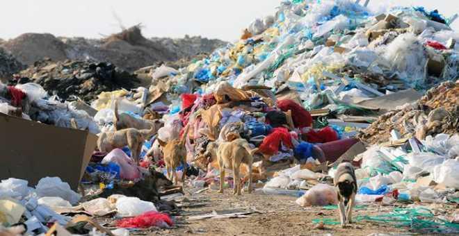 تقرير. حجم النفايات في المغرب قد يصل إلى 12 مليون طن سنة 2020