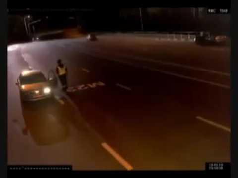 شرطي مرور يوقف سيارة للمخالفة ثم يلجأ اليها هربا من قطيع للذئاب