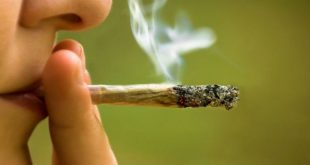قانون المخدرات