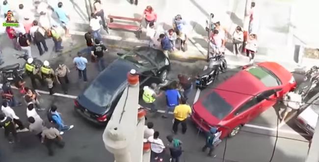 فيديو.. صراع شرس بين كلبين يثير فوضى بالشارع العام