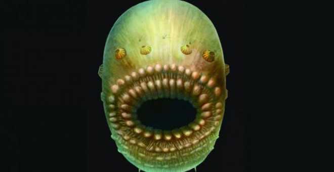 اكتشاف أقدم كائن له صلة مباشرة بالبشرية على وجه الأرض