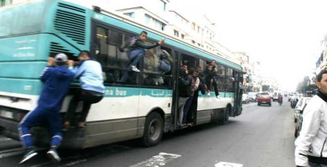 أمن البيضاء يوقف مجرما سرق قابضة تعمل في حافلة تحت التهديد بالسلاح