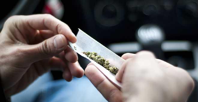 المخدرات تستقطب يوميا 600 ألف مغربي للاستهلاك