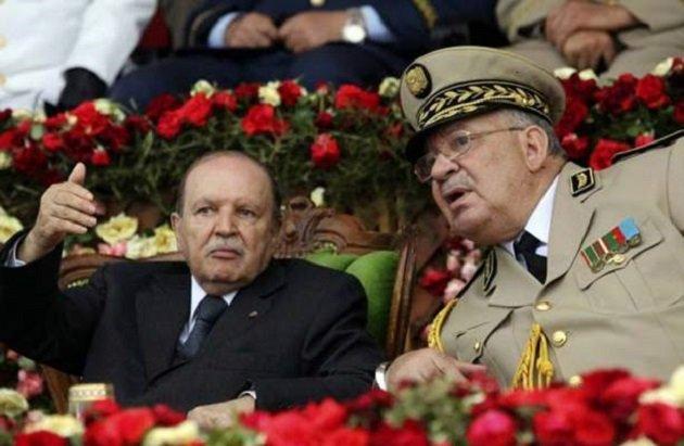 """إعلامية جزائرية: """"بلادي جنة يحكمها شياطين"""""""
