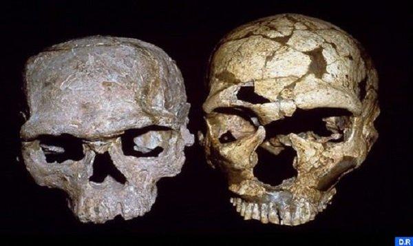 اليوسفية.. اكتشاف أقدم إنسان لصنف الإنسان العاقل بموقع جبل إيغود