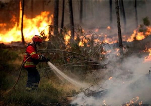 البرتغال.. حريق بغابة يسفر على مقتل 57 شخصا والحصيلة مؤهلة للارتفاع