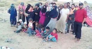 اللاجئون السوريون العالقون
