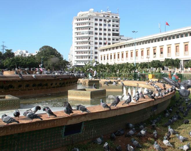 مسؤولو البيضاء يواجهون انتقادات لاذعة بسبب ''حمام النافورة''