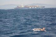 مسنة تعبر مضيق جبل طارق سباحة انطلاقا من طنجة