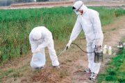 تقرير.. المبيدات الحشرية وراء 48,6 % من الوفيات في حالات التسمم