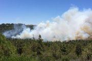 حريق غابات طنجة يخمد بعد خمسة أيام من النيران الملتهبة