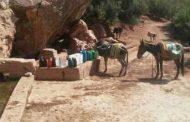 البحث عن الماء.. رحلة شاقة لسكان أزيلال مع ارتفاع الحرارة