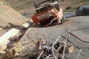 وفاة سائق ونفوق عشرات الأغنام في حادث انقلاب شاحنة بتاوريرت