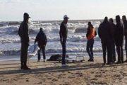 تيزنيت: استنفار أمني بعد العثور على أشلاء بشرية بإحدى الشواطئ
