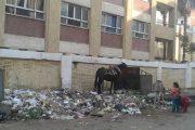 الأسواق تحاصر المدارس بالشرق.. حقوقيون يطالبون حصاد بإيفاد لجنة تفقدية