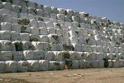 هذه حقيقة إدخال أطنان من النفايات السامة إلى المغرب
