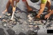 فيديو يفضح الغش في طريق ببلدية أزغنغان يلهب
