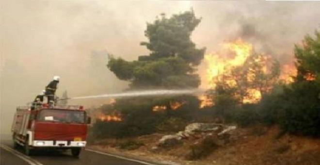 طنجة.. حريقان أتيا على حوالي 19 هكتارا من الغابات