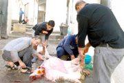 مدارس أوروبا تحرم الجالية من قضاء عيد الأضحى بالمغرب