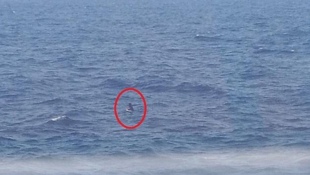 إنقاذ مغربي من الغرق حاول