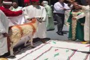 فيديو لملياردير فاسي يذبح الكبش بالطقوس الملكية يلهب