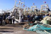 ميناء أكادير.. ضبط سفينة أوروبية تجاوزت الحد المسموح به لصيد السمك المغربي