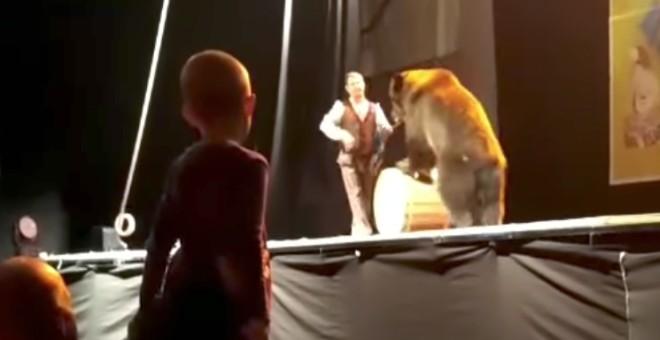 بالفيديو.. دب يهاجم مدربه ويحاول افتراسه أمام أعين الأطفال