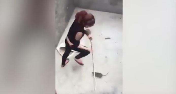 بالفيديو.. امرأة في حالة هستيريا بسبب فأر
