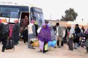 النيجر تعرب عن قلقها بعد ترحيل رعاياها من الجزائر