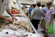 خطير.. أسماك سامة تهدد صحة المغاربة وتحذيرات من تناولها