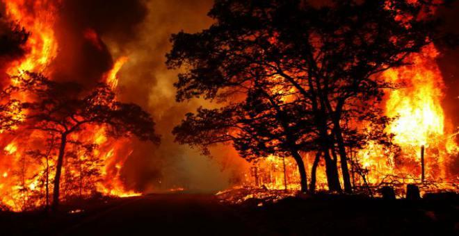 لا يصدق.. فيديو مصور من سيارة تمر وسط حرائق الغابات بكاليفورنيا
